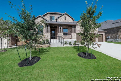Boerne Single Family Home New: 28815 Porch Swing