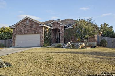 New Braunfels Single Family Home New: 3133 Soledad Ln