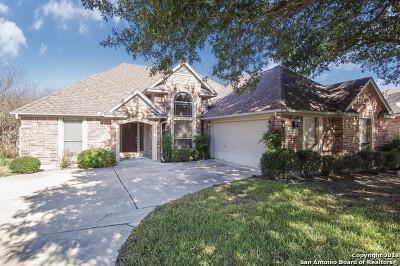 New Braunfels Single Family Home New: 316 Raven Ridge