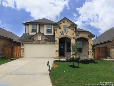 San Antonio TX Single Family Home New: $313,500