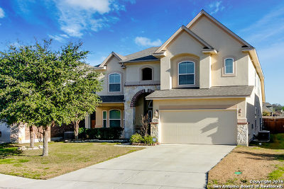 San Antonio TX Single Family Home New: $317,500