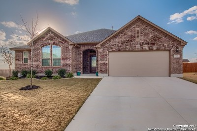 New Braunfels Single Family Home New: 919 Hickory Holw