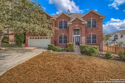 San Antonio Single Family Home New: 21222 La Pena Dr