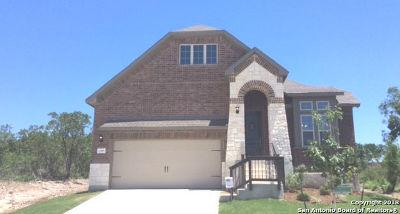 San Antonio Single Family Home New: 13707 Sunnydale Pass