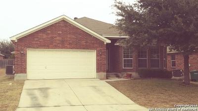 San Antonio Single Family Home New: 6039 Mountain Mdws