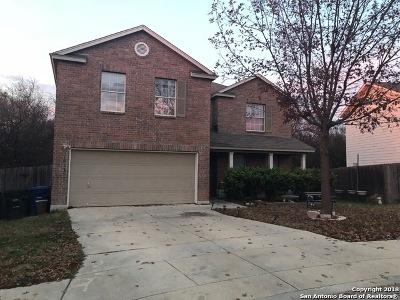 San Antonio Single Family Home New: 10155 Cedarcliff