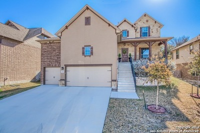 San Antonio Single Family Home New: 25606 Willard Path