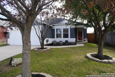 San Antonio Single Family Home New: 13318 Partridge Hl