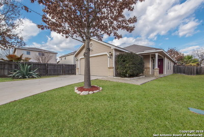 San Antonio Single Family Home New: 9927 Red Ascot