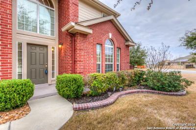 Guadalupe County Single Family Home New: 409 Zoeller Way