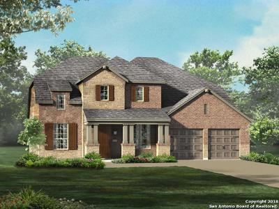 New Braunfels TX Single Family Home New: $419,355