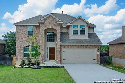 San Antonio Single Family Home For Sale: 2411 Tremonto