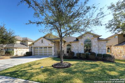 New Braunfels TX Single Family Home New: $297,000