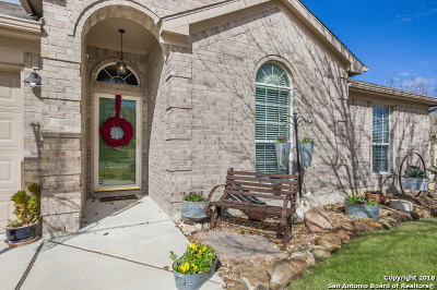 New Braunfels Single Family Home New: 1760 Jasons South Ct