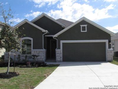 San Antonio Single Family Home New: 11118 Pomona Park