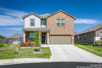 San Antonio TX Single Family Home New: $248,822