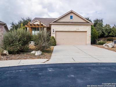 San Antonio TX Single Family Home Active RFR: $235,000