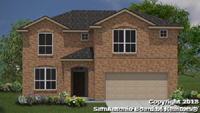 San Antonio TX Single Family Home New: $262,000
