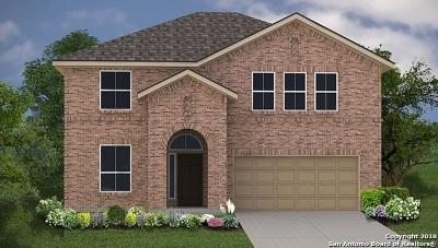 San Antonio TX Single Family Home New: $264,800