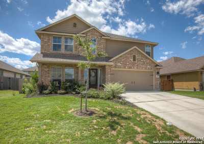 New Braunfels Single Family Home New: 952 Divine Way