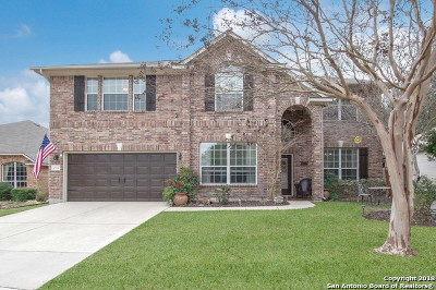 Helotes Single Family Home New: 10516 Black Horse