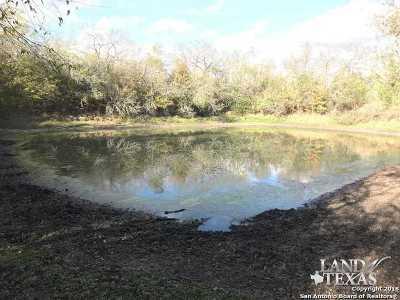 Atascosa County Farm & Ranch For Sale: County Road 413