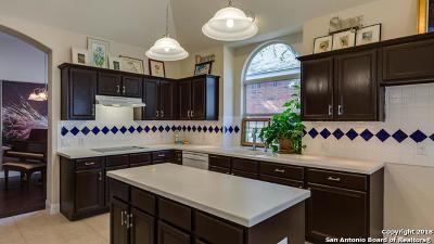 San Antonio TX Single Family Home New: $384,900