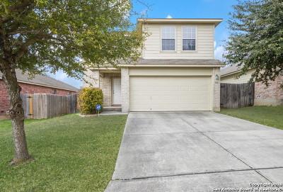 San Antonio TX Single Family Home New: $207,000