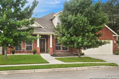 Helotes Single Family Home New: 15823 Ponderosa Pass