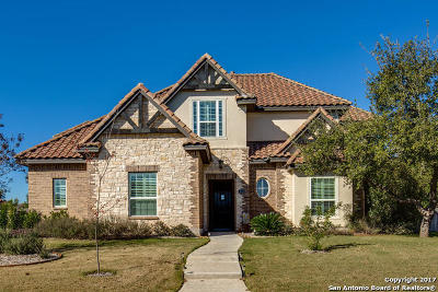 Bexar County Single Family Home For Sale: 315 Regent Circle