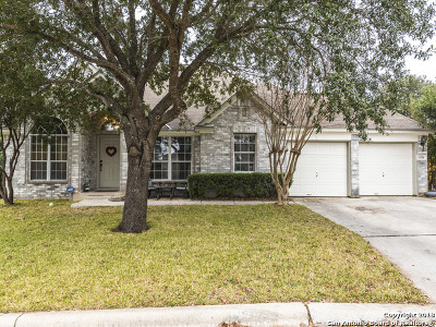 New Braunfels Single Family Home New: 1119 Running River