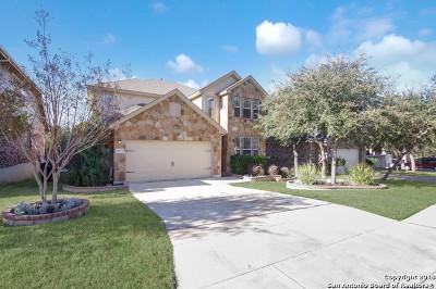 San Antonio Single Family Home New: 4823 Barboli