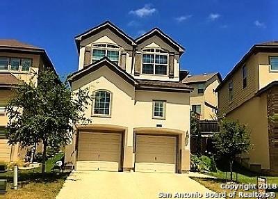 San Antonio Single Family Home New: 21707 Andrews Gardens