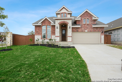 San Antonio TX Single Family Home New: $319,500