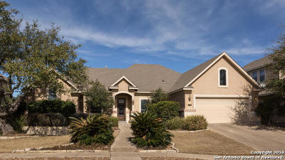 San Antonio Single Family Home For Sale: 215 Evans Oak Ln