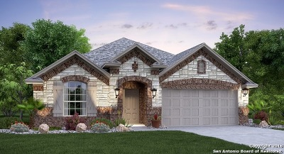 Bulverde Single Family Home For Sale: 5041 Blue Ivy