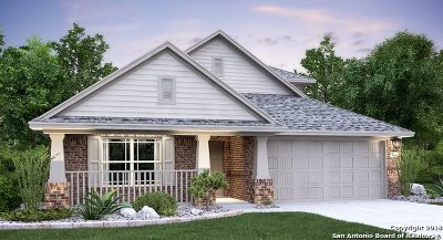 Bulverde Single Family Home For Sale: 5037 Blue Ivy