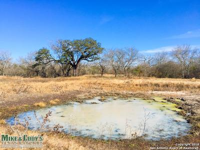 Atascosa County Farm & Ranch For Sale: 1710 Red Barn Rd