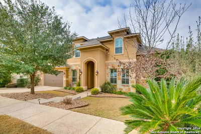 San Antonio Single Family Home For Sale: 127 Evans Oak Ln