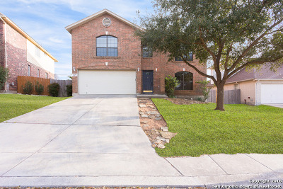 San Antonio Single Family Home For Sale: 21475 Bubbling Creek