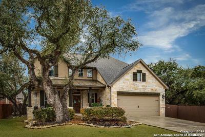 San Antonio Single Family Home For Sale: 2410 Verona Park