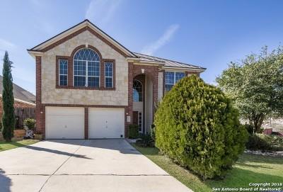 San Antonio Single Family Home Back on Market: 22031 Dolomite Dr