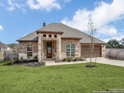 Boerne Single Family Home For Sale: 28110 Versant Hills