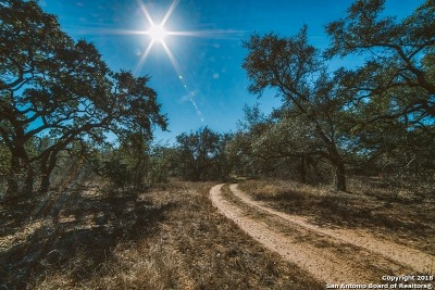 San Antonio Farm & Ranch For Sale: 400 Vine St