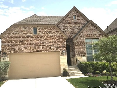 Boerne Single Family Home For Sale: 27154 Smokey Chase