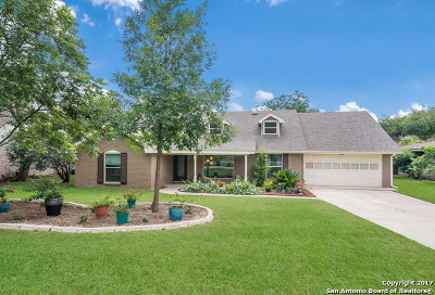 Castle Hills Single Family Home For Sale: 341 Towne-Vue Dr