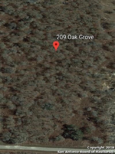 Residential Lots & Land For Sale: 209 Oak Grove
