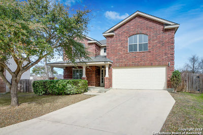 Helotes Single Family Home For Sale: 9602 Sandie