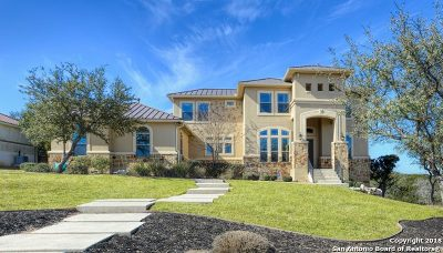San Antonio Single Family Home For Sale: 20019 Terra Canyon