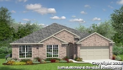 Cibolo Single Family Home For Sale: 204 Minerals Way